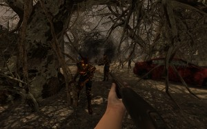 Alpha_11_burnt_forest_02